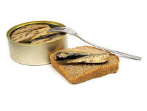 Sprat fish canned royalty free stock photos