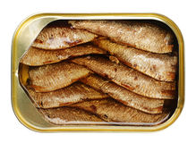 Sprat fish canned stock photos