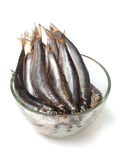 Sprat fish in a glass bowl Royalty Free Stock Photo
