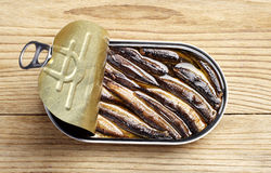 Sprat in an open tin can Stock Image