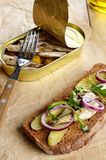 Sprat sandwich with pickled vegetables Stock Image