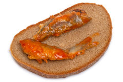 Sprat in tomato sauce on bread Royalty Free Stock Images