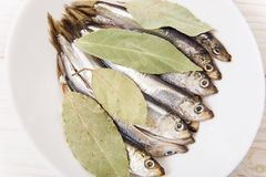Sprat on the white plate with spice.White wooden background.Clos. E-up view Stock Images