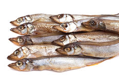 Sprats. Smoked sprats on a white background close up Royalty Free Stock Photos