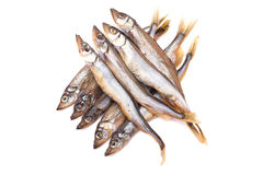 Sprats. Smoked sprats on a white background close up Stock Images