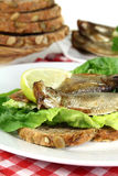Sprats Stock Image