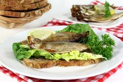 Sprats Royalty Free Stock Image