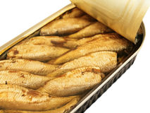 Sprats Royalty Free Stock Photo