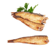 Sprats Royalty Free Stock Images