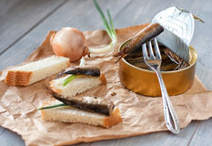 Sprats in can and bread Stock Image