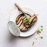 Sprats in can Royalty Free Stock Image
