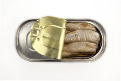 Sprats in a metallic can. Isolated on a white background Stock Image