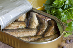 Sprats with oil in tin can Royalty Free Stock Photos