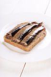 Sprats sandwich Royalty Free Stock Image