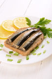 Sprats sandwiches Royalty Free Stock Photos