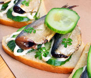 Sprats sandwiches, appetizer on paper Stock Images