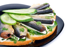 Sprats sandwiches, appetizer on plate Stock Images