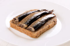 Sprats sandwiches Royalty Free Stock Images