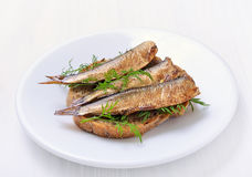 Sprats sandwiches. On white plate stock images