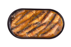 Sprats in a tin Stock Photos