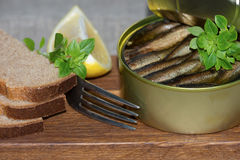 Sprats in a tin and coarse rye bread Stock Photography