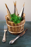 Sprats in wooden barrels with herbs Stock Image