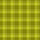 Sprawdza tartan szkockiej kraty tkaniny tekstury bezszwowego deseniowego tło, kolor żółtego i błękitnego kolor - khakiego, Obraz Stock