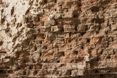 Sprawling wall Royalty Free Stock Photos