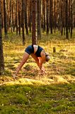 Sprawność fizyczna ćwiczy w lesie Obraz Stock