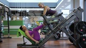 Sprawności fizycznej dama robi nogi spotkanie z prasą maszynie z dziewczyną w gym zbiory