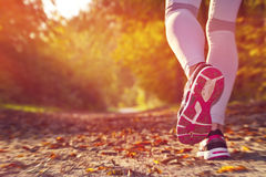 Sprawności fizycznej dziewczyny bieg Fotografia Stock