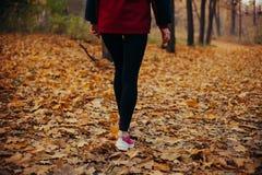 Sprawności fizycznej dziewczyny bieg przy zmierzch jesieni pomarańcze lasem Zdjęcie Stock