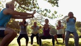 Sprawności fizycznej grupowy ćwiczyć w parku zbiory wideo