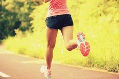Sprawności fizycznej kobieta iść na piechotę bieg przy lasowym śladem obraz stock