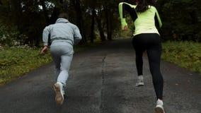 Sprawności fizycznej para przygotowywająca dla biegać rasy na drewnianym przejściu na plenerowej parkowej zaczyna linii pozie zbiory