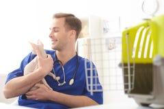 Sprawny potomstwo weterynarz pracuje w klinice Fotografia Stock