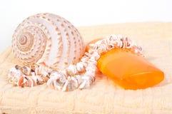 Spray bottle sunscreen, towel, shells Stock Photos