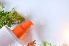 Spray des Lichtschutzes zwei mit Draufsichtabschluß der Meerespflanze oben Stockbild