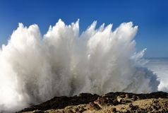 Spray From Huge Waves At Shore Acres State Park, Oregon Stock Photography