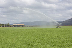 Spray Irrigator and Farm Shed Stock Photo