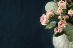 Spray roses. Bouquet of beautiful pink spray roses on dark background Stock Image