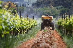 Spray Tractor. Tractor spraying the vineyards for insects in Stellenbosch Stock Images