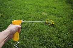 Spray weed killer Royalty Free Stock Photo