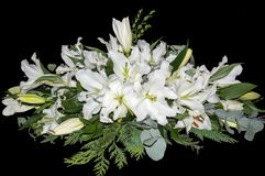 Spray of White Lilies Stock Photos