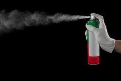 Spraydose Insektenvertilgungsmittel Stockfotografie