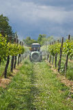 Spraying. A farmer on his tractor while spraying the grapes Royalty Free Stock Photography
