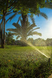 Spraying. Machine waters grass in hot Africa stock photography