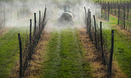 Spraying apple orchard Royalty Free Stock Image