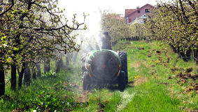 Spraying apple orchard in spring Royalty Free Stock Photo