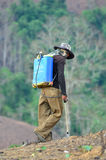 Spraying chemicals in the shifting cultivation Stock Photography